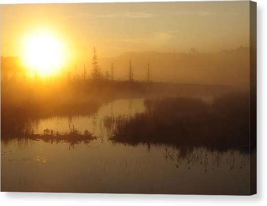 Wilderness Sunrise Canvas Print