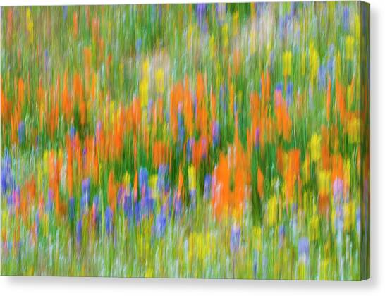 Balance Beam Canvas Print - Wildflower Abstract, Tehachapi by Russ Bishop