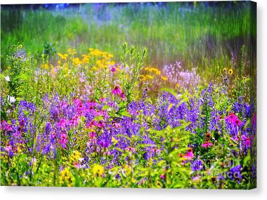 Wildflower Beauty  Canvas Print