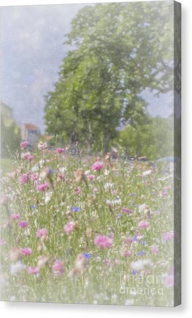 Wildflower Impressionism Canvas Print