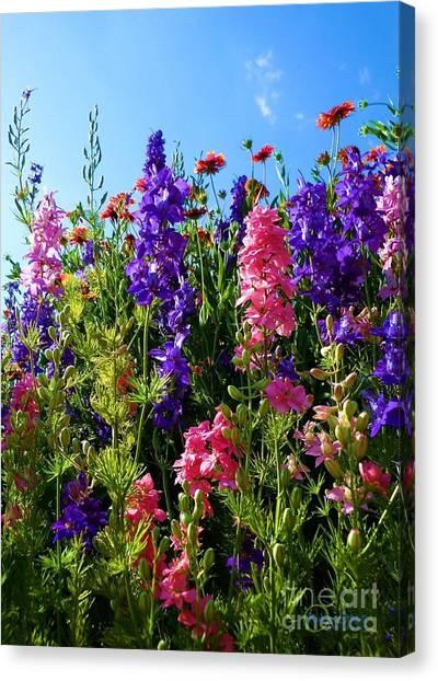 Wildflowers #14 Canvas Print