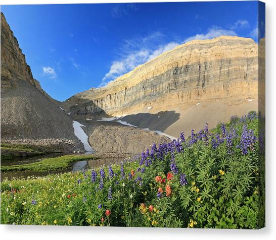Wildflowers At Emerald Lake. Canvas Print