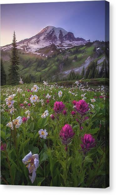 Mount Rainier Canvas Print - Wildflowers Of Mt. Rainier by Steve Schwindt