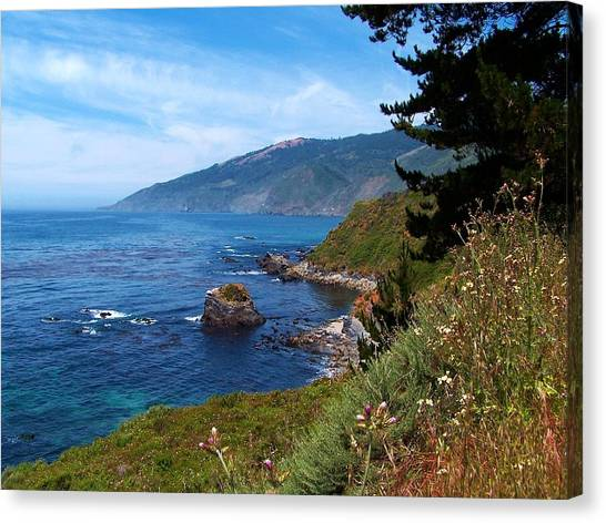 Wildflowers On The Coast Canvas Print