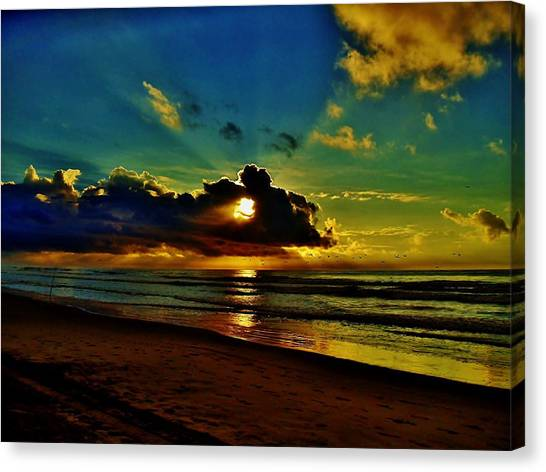 Wildwood Sunrise Canvas Print