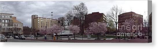 Wilkes-barre In Bloom Canvas Print