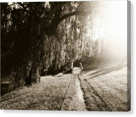 High School Canvas Print - Willow Trail by September  Stone