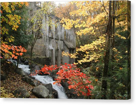 Rights Managed Images Canvas Print - Willsons Ruins In Gatineau Park In Quebec by Rob Huntley