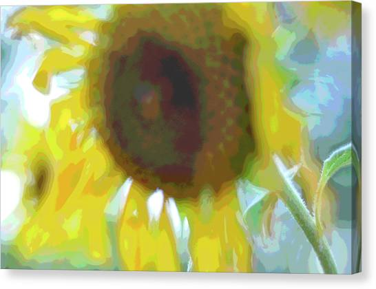 'wilted' Abstract Canvas Print