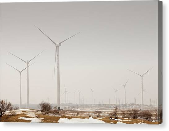 Climate Change Canvas Print - Wind Farm by Ashley Cooper