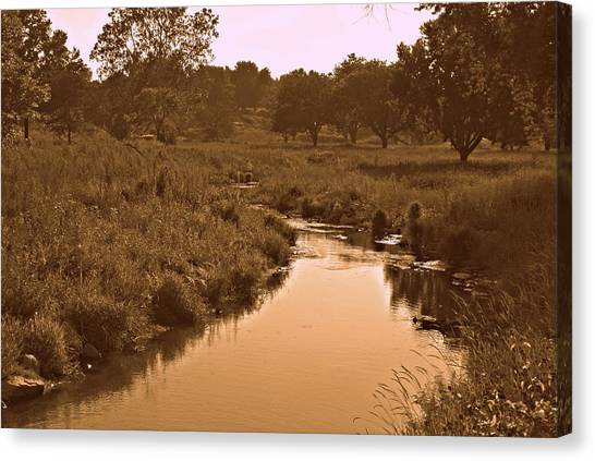 Disc Golf Canvas Print - Winding Creek by Dawdy Imagery