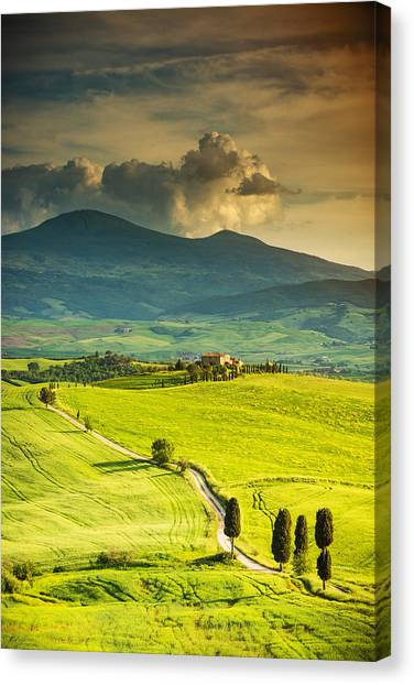Winding Road In Tuscany Canvas Print by Gehringj