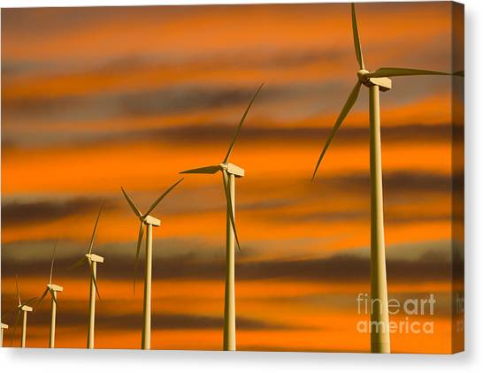 Windmill Farm Canvas Print