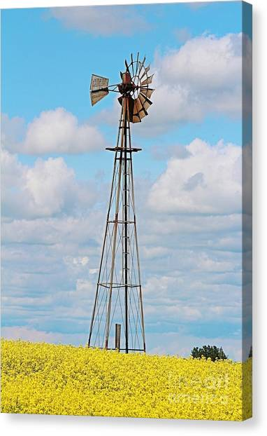 Canvas Print featuring the photograph Windmill In Canola Field by Ann E Robson