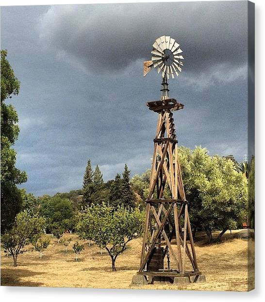 Orchard Canvas Print - Windmill by Tom Parrette