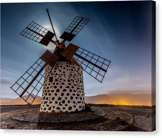 Canaries Canvas Print - Windmill by Martin Zalba