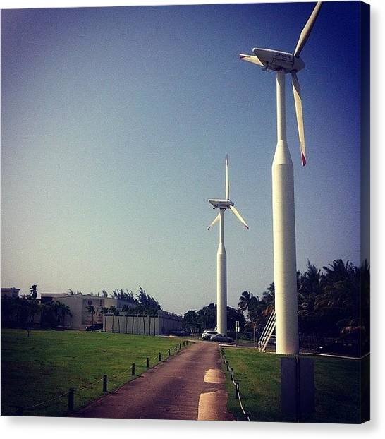 Distillery Canvas Print - #windmill Power At The #bacardi by Allyn Alford