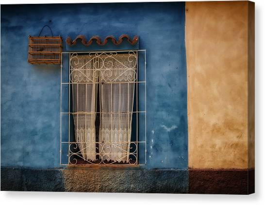 Window And The Birdcage Canvas Print