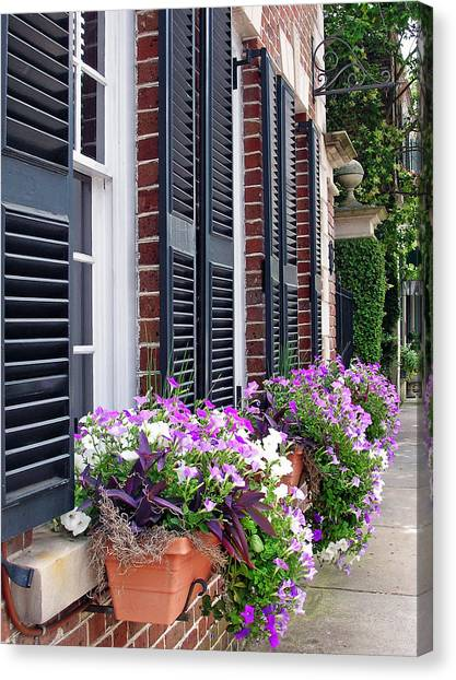 Window Box 2 Canvas Print by Sarah-jane Laubscher