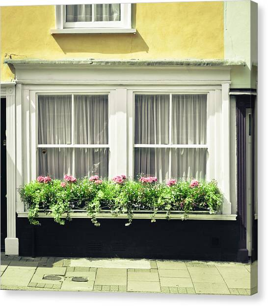 Window Canvas Print - Window Garden by Tom Gowanlock