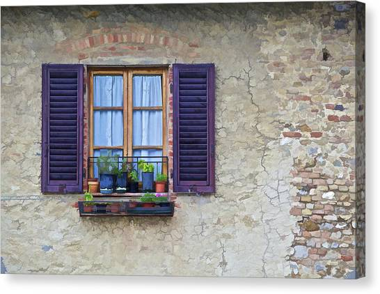 Lead Character Canvas Print - Window With Potted Plants Of Rural Tuscany by David Letts