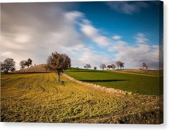 Windows 9 Default Background Image Canvas Print