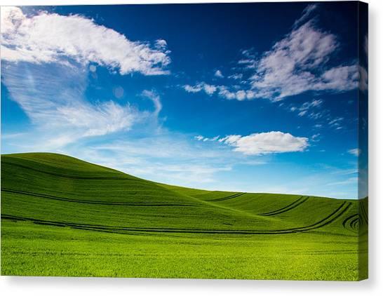 Windows Xp Canvas Print