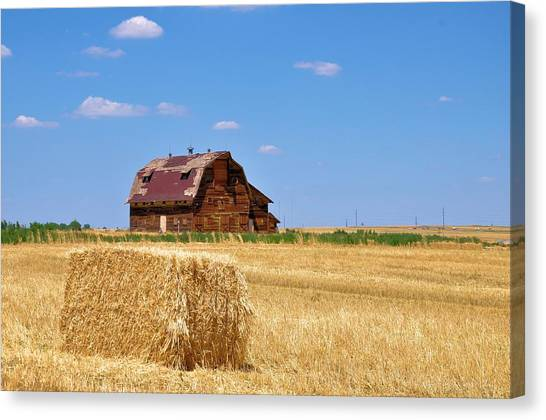 Windswept And Lonely Colorado Barn Canvas Print