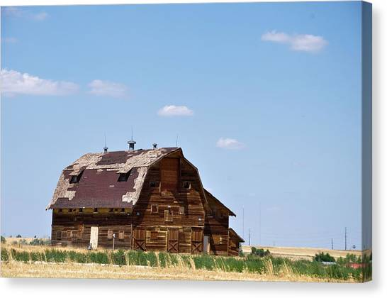 Windswept Colorado Barn Canvas Print