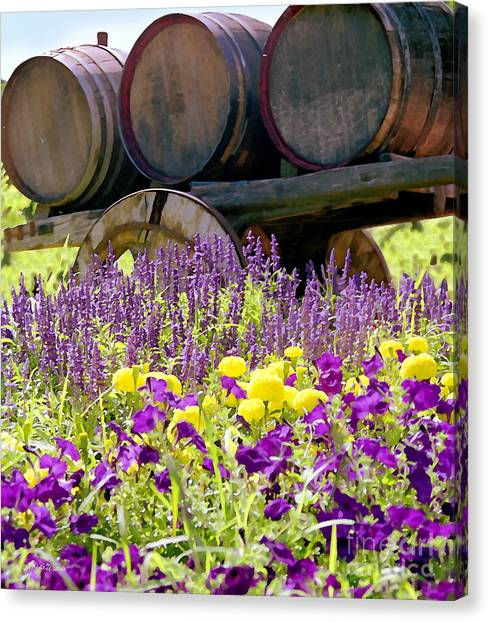 Wine Barrels At V. Sattui Napa Valley Canvas Print