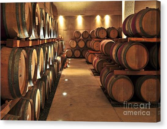 Winery Canvas Print - Wine Barrels by Elena Elisseeva