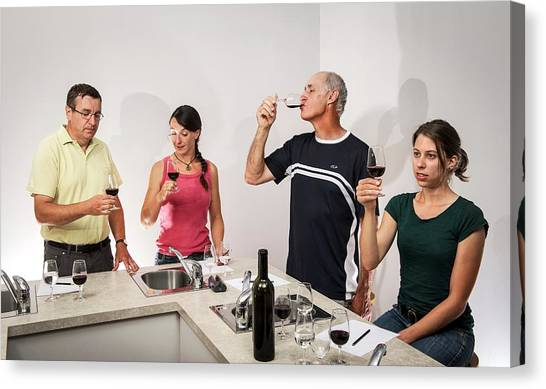 Tasting Canvas Print - Wine Tasting Research by Philippe Psaila
