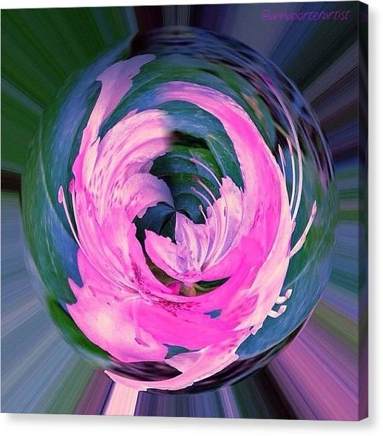 Florals Canvas Print - Winged Azalea by Anna Porter