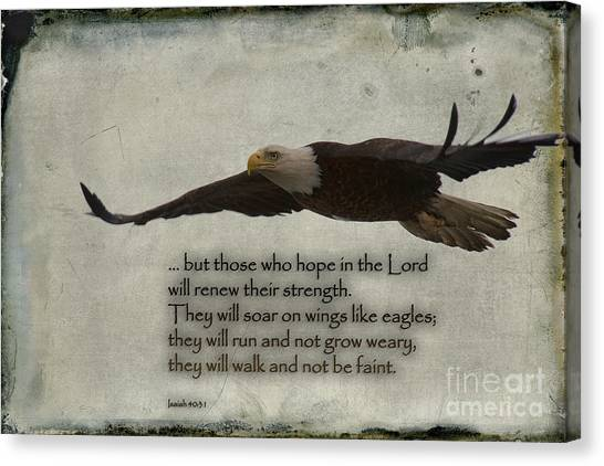 Wings Like Eagles Canvas Print