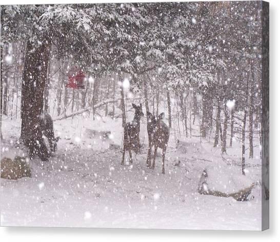 Winter 2014 Canvas Print