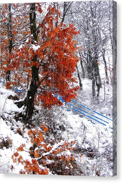 Winter 6 Canvas Print by Vassilis Tagoudis