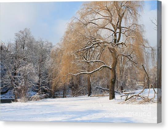 Winter Along The River Canvas Print