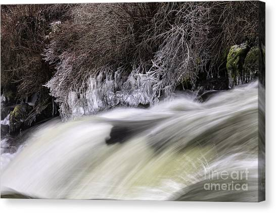 Winter At Dillon Falls Canvas Print