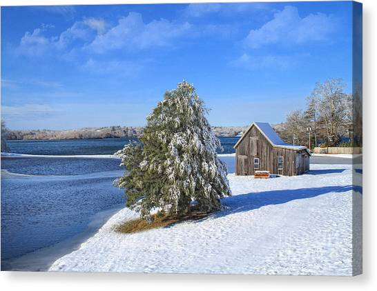 Winter At The Bog II Canvas Print