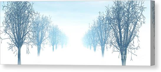 Winter Avenue Canvas Print