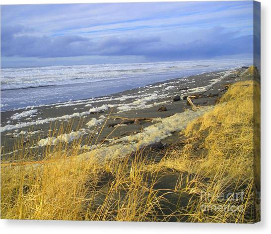 Winter Beach Canvas Print