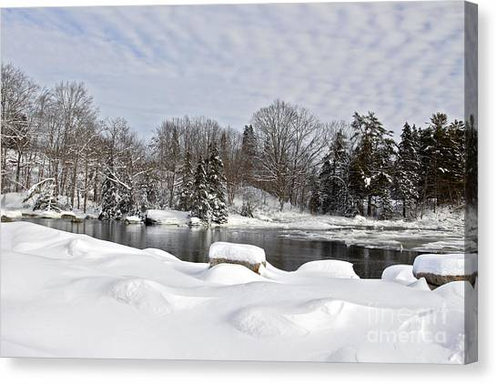 Winter Beauty Canvas Print