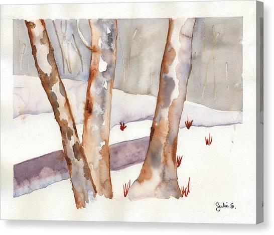 Winter Birch Canvas Print