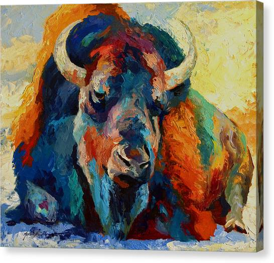 Prairie Canvas Print - Winter Bison by Marion Rose