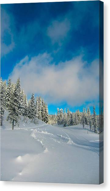 Winter Bliss Canvas Print