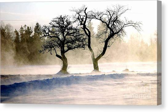 Winter Bluster Canvas Print