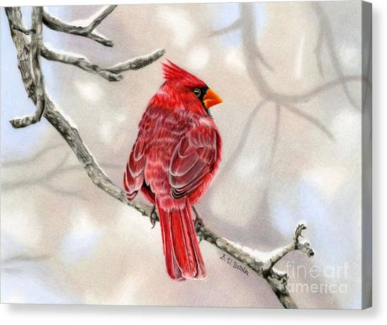 Cardinals Canvas Print - Winter Cardinal by Sarah Batalka