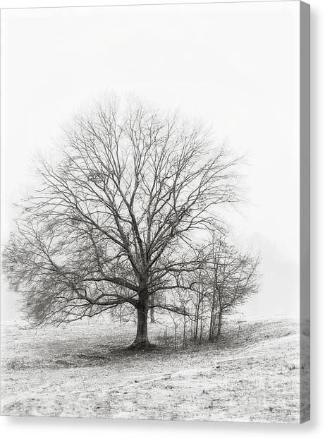 Winter Chrome Canvas Print