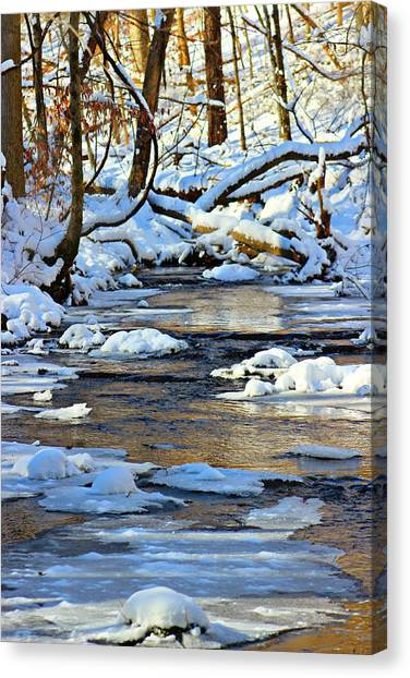 Canvas Print featuring the photograph Winter Creek by Candice Trimble