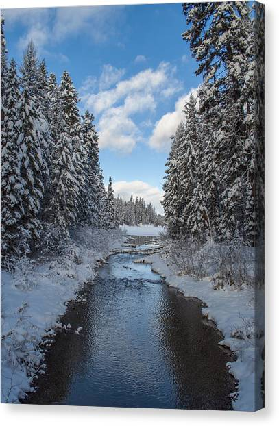 Winter Creek Canvas Print